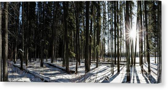 Canvas Print featuring the photograph Sundial Forest by Brad Allen Fine Art
