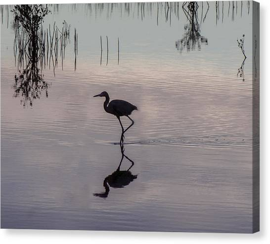 Sundown Heron Silhouette Canvas Print