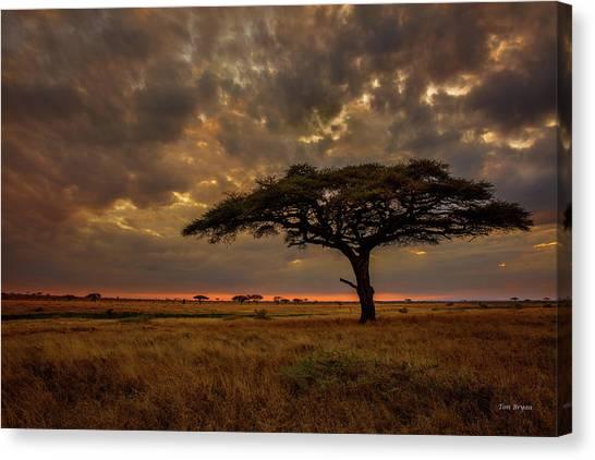 Sundown, Namiri Plains Canvas Print