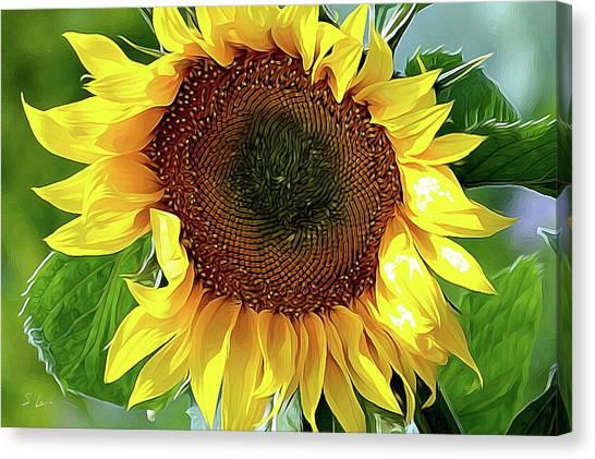 Sunflower 10...06.10 Yellow Symbolised Happiness Canvas Print