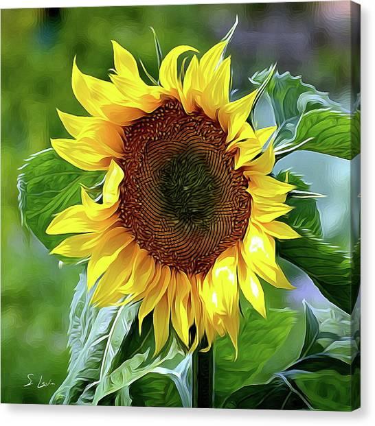 Sunflower 10...10.28 Yellow Symbolised Happiness Canvas Print
