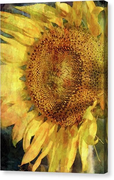 Sunflower 2254 Idp_2 Canvas Print