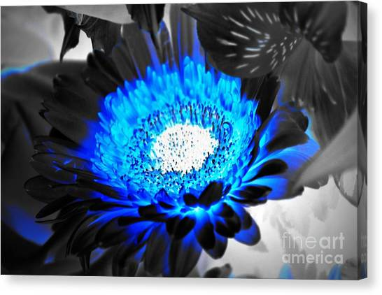 Canvas Print featuring the photograph Sunflower Blues by Patti Whitten