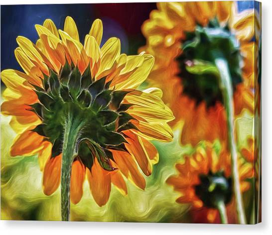 Canvas Print featuring the digital art Sunflower City by Doctor Mehta