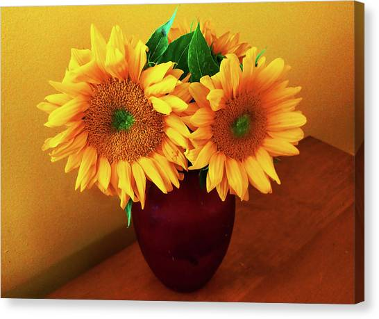 Sunflower Corner Canvas Print