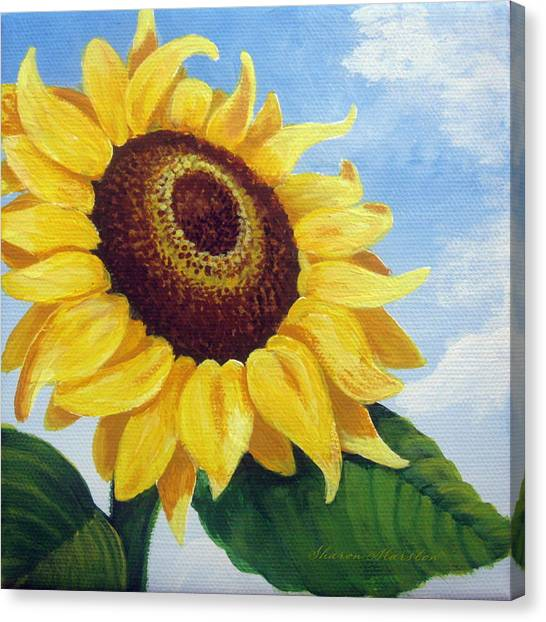 Sunflower Moment Canvas Print by Sharon Marcella Marston