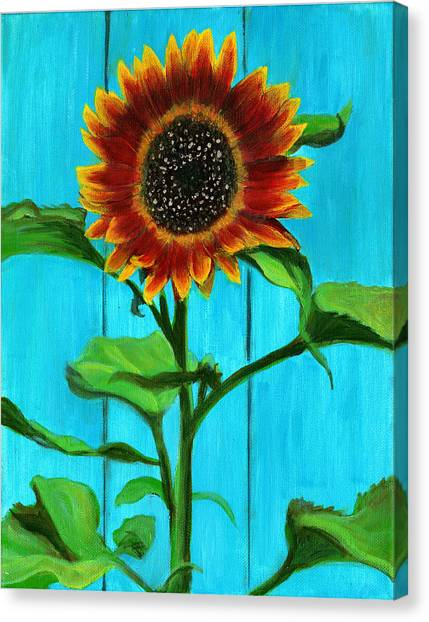 Sunflower On Blue Canvas Print