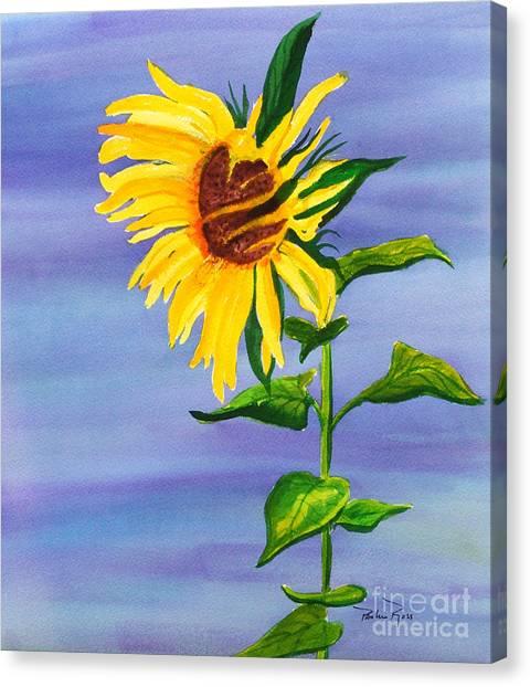 Sunflower Canvas Print by Pauline Ross
