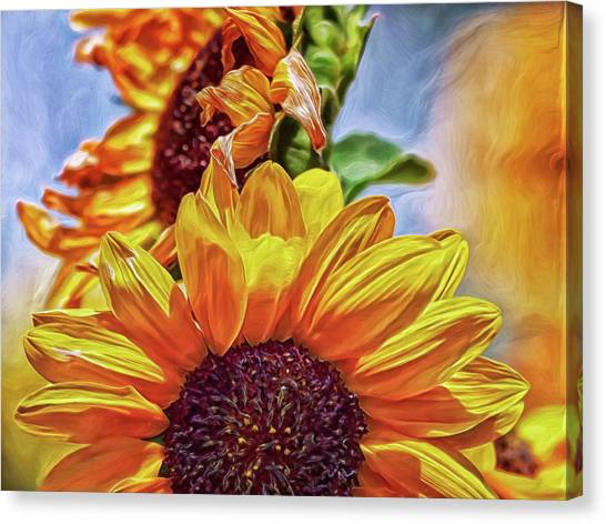 Canvas Print featuring the digital art Sunflower Risen by Doctor Mehta