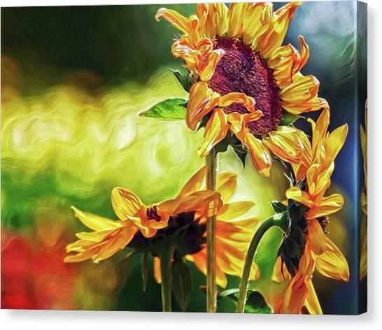 Canvas Print featuring the digital art Sunflower Season by Doctor Mehta