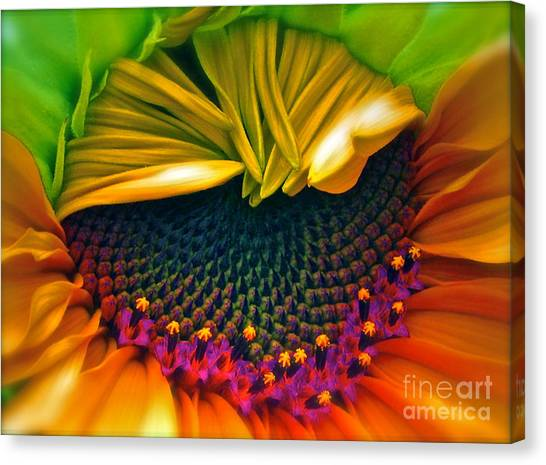 Smoothie Canvas Print - Sunflower Smoothie by Gwyn Newcombe
