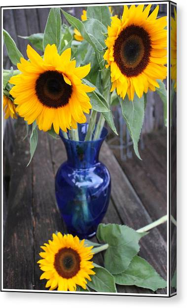 Sunflower Seeds Canvas Print - Sunflowers And Blue Vase - Still Life by Dora Sofia Caputo Photographic Design and Fine Art