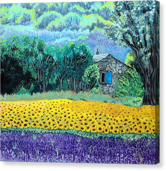Sunflowers And Lavender Canvas Print