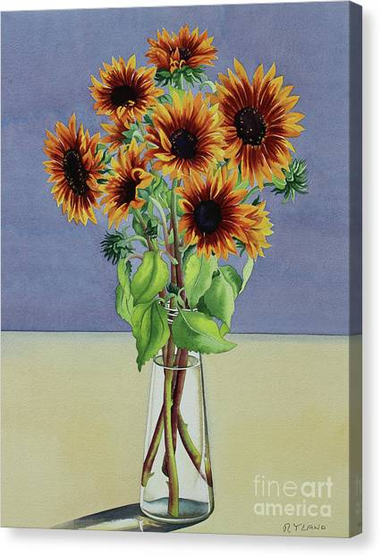Decorative Glass Canvas Print   Sunflowers By By Christopher Ryland