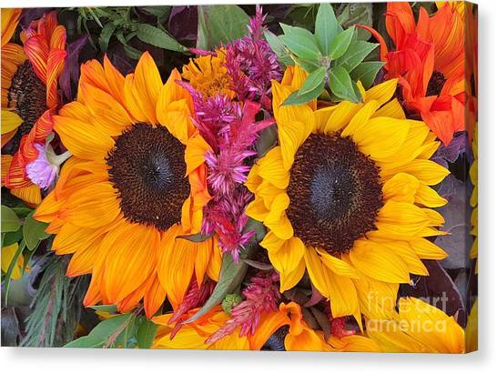 Sunflowers Eyes Canvas Print