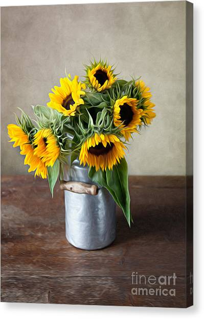 Floral Canvas Print - Sunflowers by Nailia Schwarz