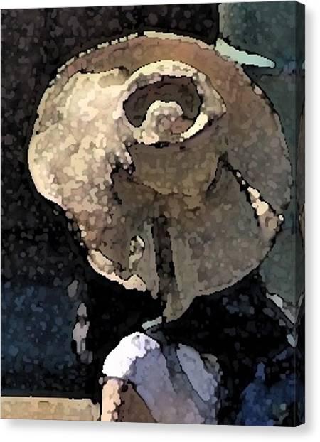 Sunhat Canvas Print by Ken Barker