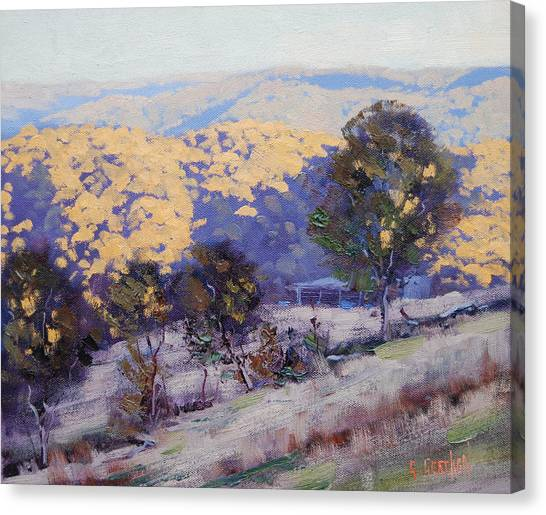 Realistic Canvas Print - Sunlight And Shadows by Graham Gercken