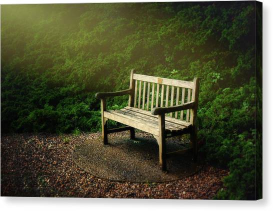 Shrub Canvas Print - Sunlight On Park Bench by Tom Mc Nemar