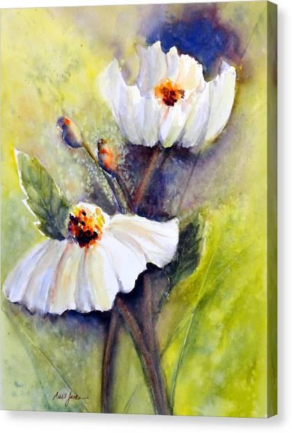 Sunlit Faces - Matilija Poppies Canvas Print