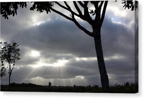 Sunlit Gray Clouds At Otay Ranch Canvas Print