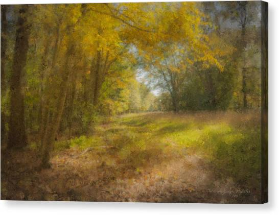 Sunlit Meadow In Borderland Canvas Print