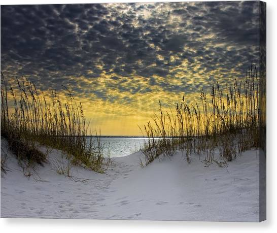 Coasts Canvas Print - Sunlit Passage by Janet Fikar
