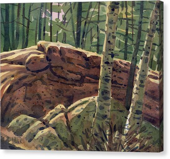 Sunlit Rocks Canvas Print by Donald Maier