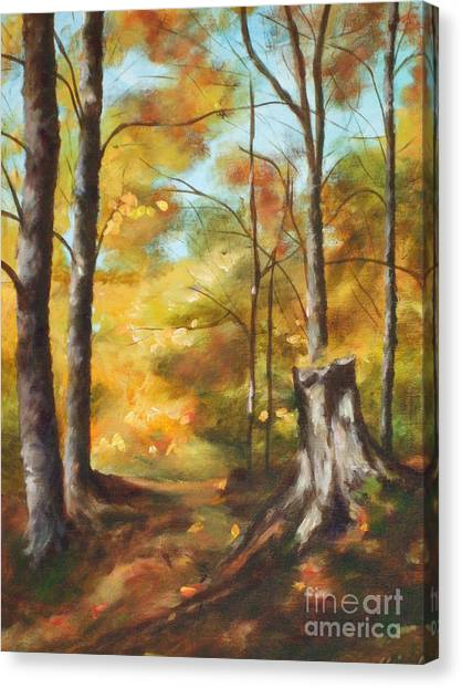 Sunlit Tree Trunk Canvas Print