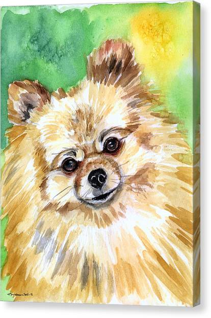 Watercolor Pet Portraits Canvas Print - Sunny - Pomeranian by Lyn Cook