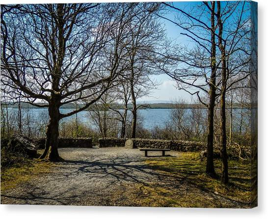 Sunny Afternoon At Lough Coole Canvas Print