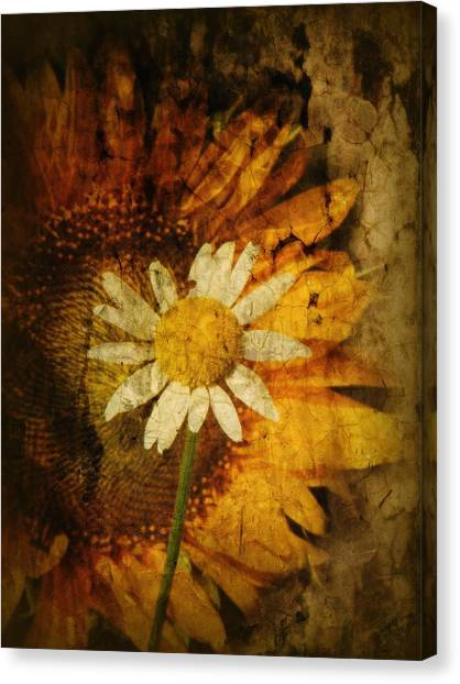 Floral Canvas Print - Sunny Antiqued by Tingy Wende