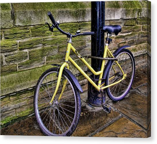 Sunny Cycle Canvas Print by JAMART Photography