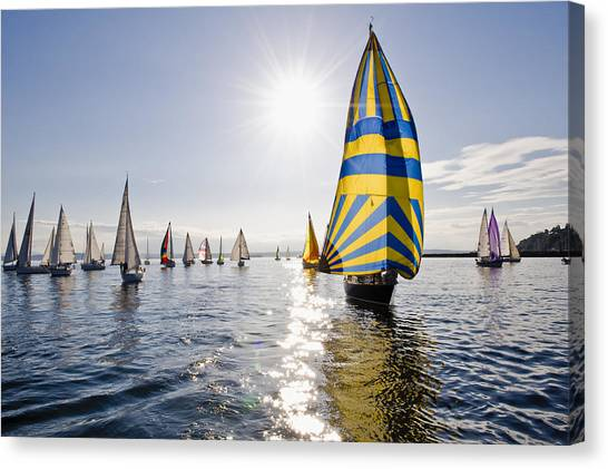 Sunny Day Sailing Canvas Print by Tom Dowd