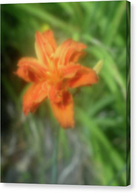 Sunny Orange Canvas Print
