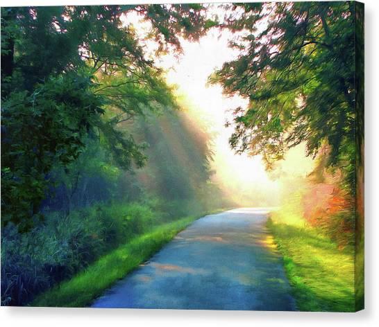 Sunny Trail Canvas Print