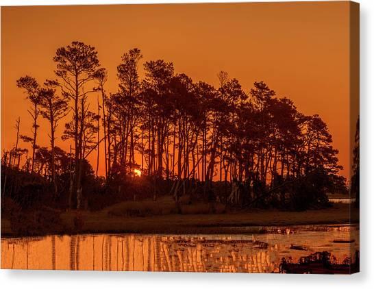 Sunrise Along A Tree Line Canvas Print
