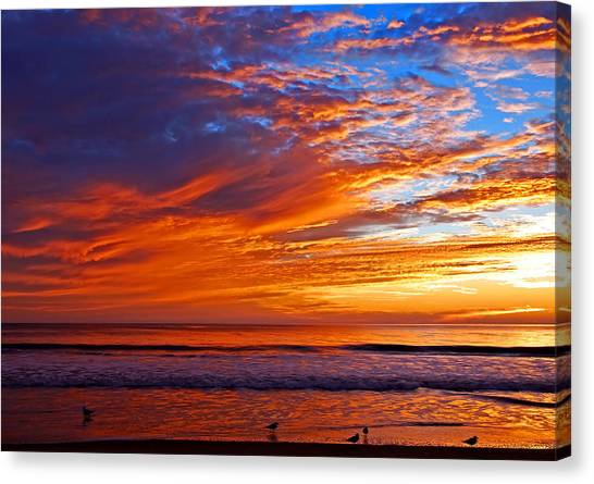 Sunrise And Seagulls Canvas Print