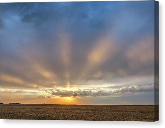 Sunrise And Wheat 03 Canvas Print