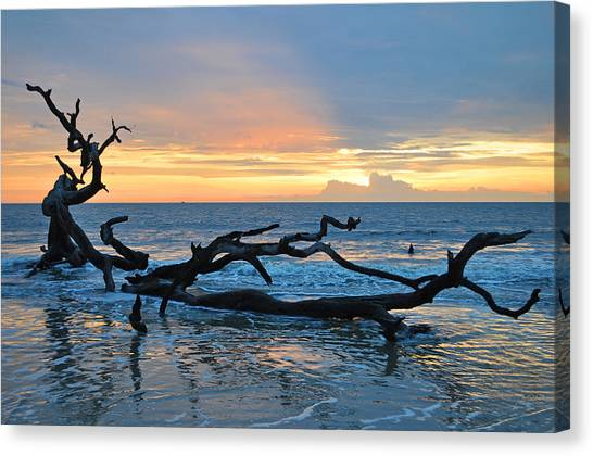 Sunrise At Driftwood Beach 1.4 Canvas Print