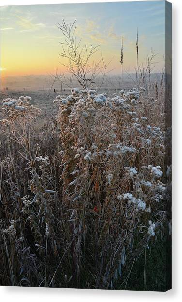 Prairie Sunrises Canvas Print - Sunrise At Hackmatack National Wildlife Refuge by Ray Mathis