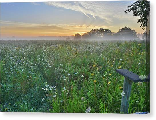 Prairie Sunrises Canvas Print - Sunrise At Volo Bog Natural Area by Ray Mathis