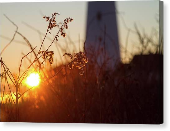 Sunrise Backlight Canvas Print