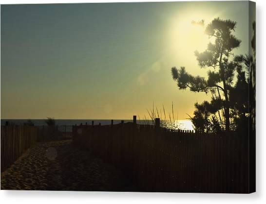 Sunrise Bask Canvas Print by JAMART Photography