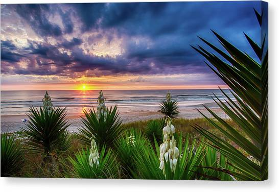 Sunrise Blooms Canvas Print