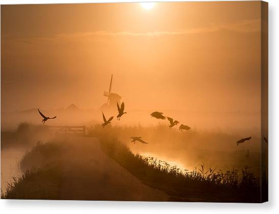 Sunrises Canvas Print - Sunrise Flight by Harm Klaverdijk