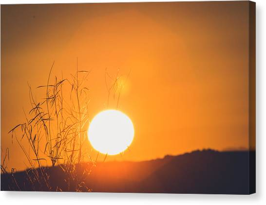 Mojave Desert Canvas Print - Sunrise by Hyuntae Kim