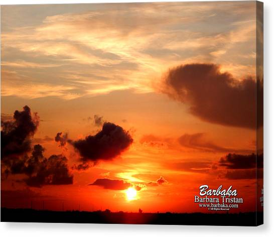 Sunrise In Ammannsville Texas Canvas Print