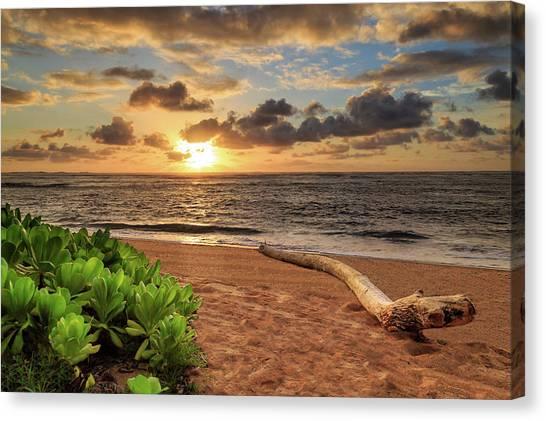 Sunrise In Kapaa Canvas Print