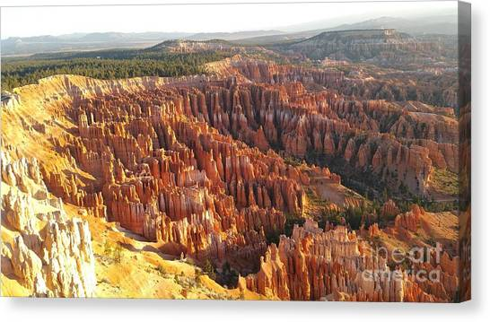 Sunrise In The Canyon Canvas Print